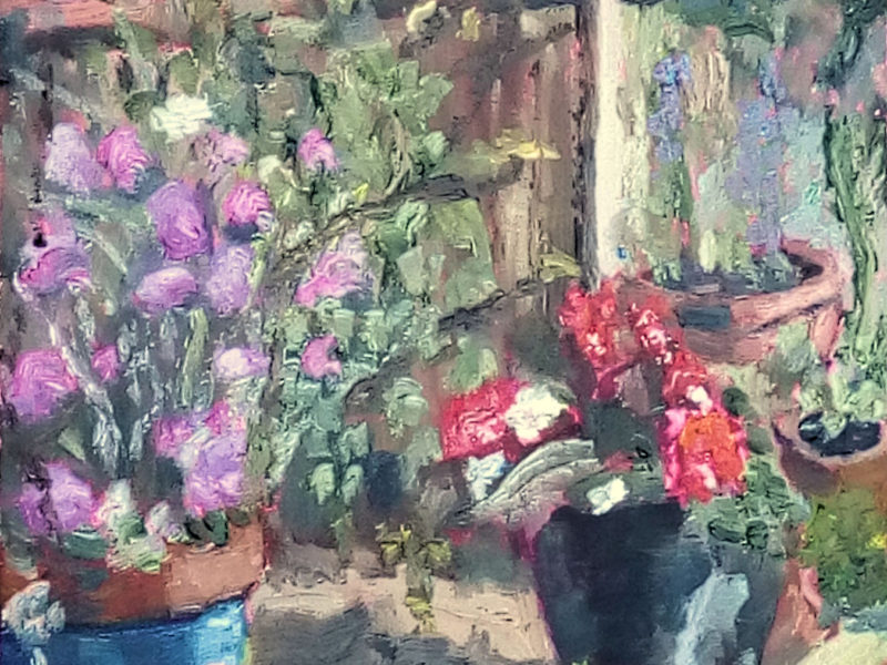 Plants in my garden. oil painting